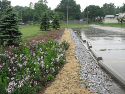 cc-south-garden-in-rain
